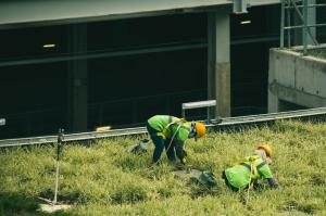 Длъжностна характеристика на длъжността Работник, озеленяване