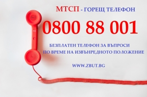 МТСП с безплатен телефон за въпроси по време на извънредното положение